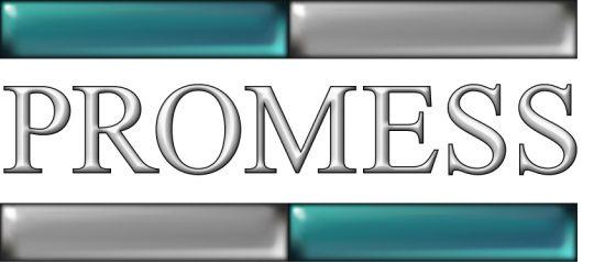 Promess Logo Transparent